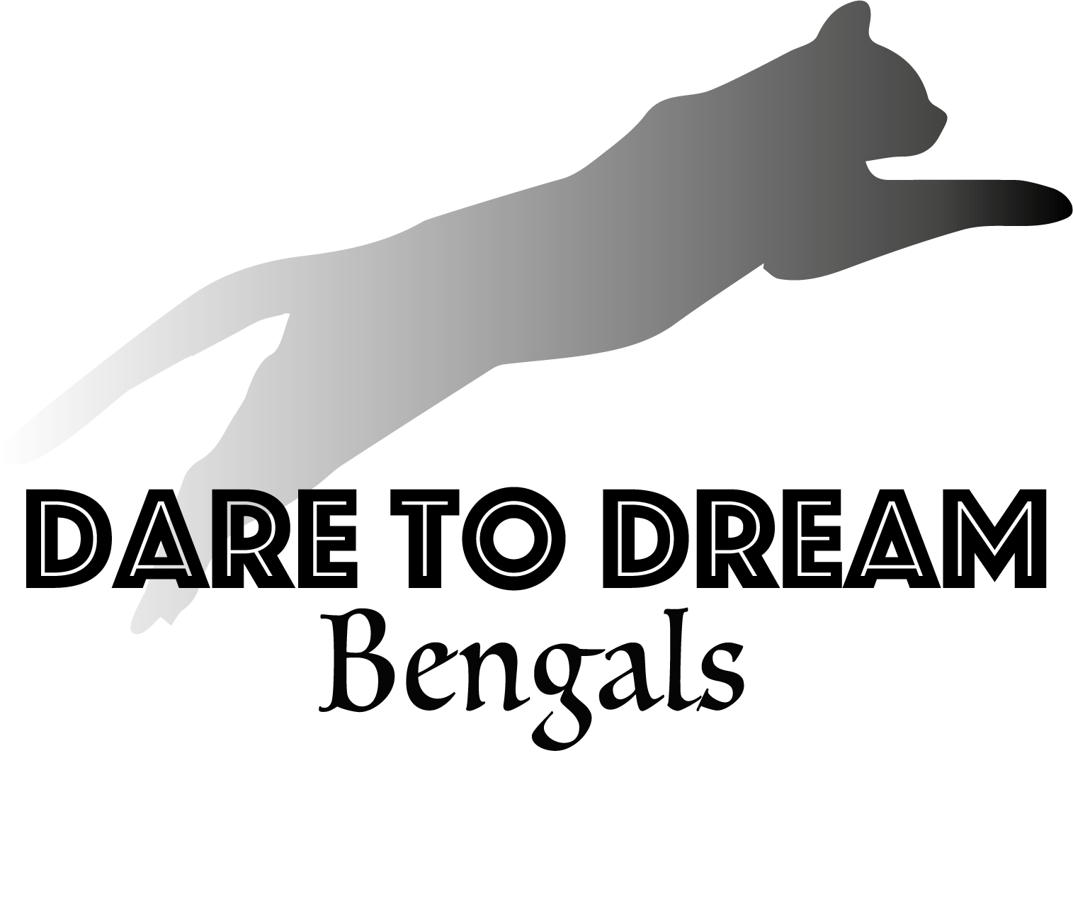 Dare to Dream Bengals